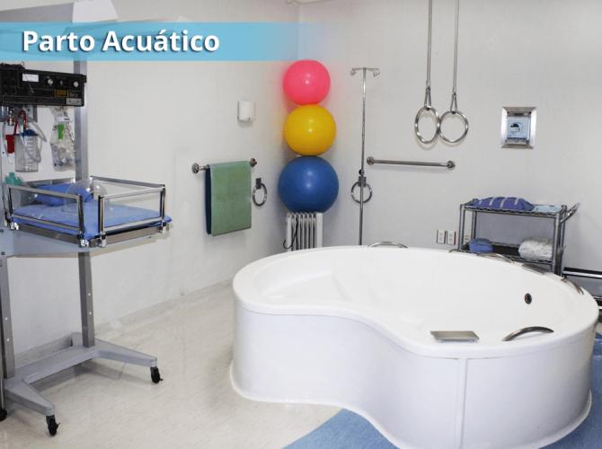 acuatico-02