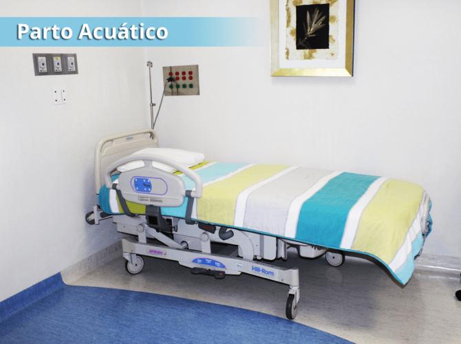 acuatico-04