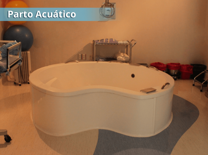 acuatico-08